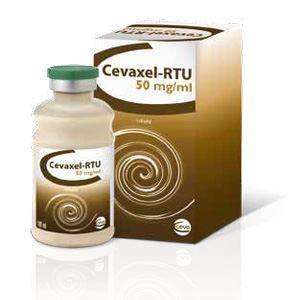 Cevaxel 100 ml