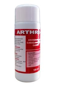 Arthro gel 100 ml
